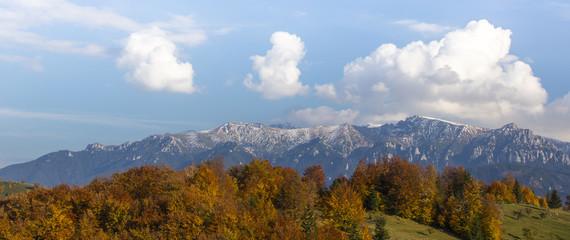 Beautiful autumn foliage and aspen trees in the Alps