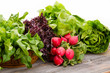 Healthy fresh salad ingredients - 61721004