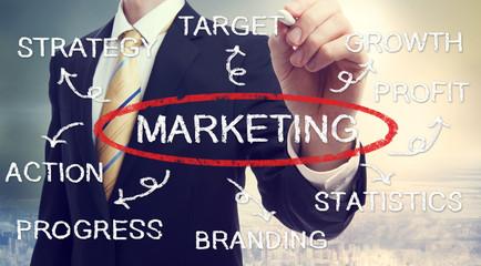 Businessman drawing marketing concept diagram