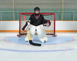 Young Kid Goalie In Hockey Net Crease
