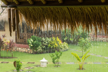 Pouring tropical rain
