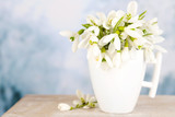 Beautiful snowdrops in cup on blue background