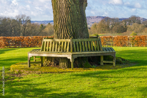 Bench outdoors England farm