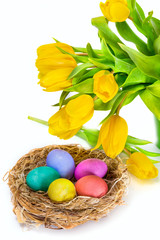 Easter eggs in the nest and tulip flowers