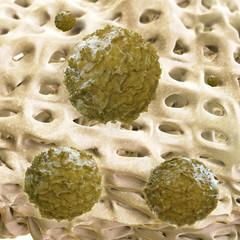 Stammzellen - 3d Render