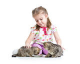 kid girl feeding cats kittens