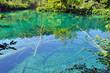 Turquoise lake in Plitvice, Croatia