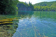 Turquoise lake in Plitvice, Croatia