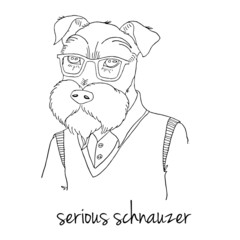 Hipster drawing - serious schnauzer. VECTOR art.