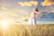 Sommersonne im Getreidefeld