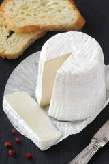 Fresh goat cheese with soft white mold