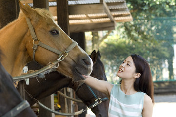 Japanese woman in her twenties stroking horse horse