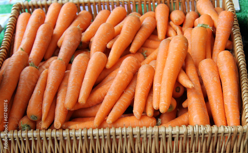A Basket of Freshly Harvested Vegetable Carrots.