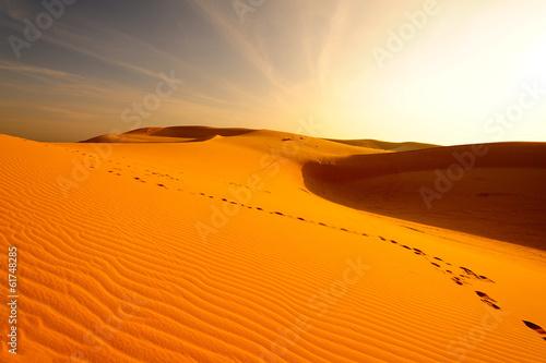 Fotobehang Woestijn Sand Dune in Desert Landscape at Sunrise