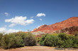 Red cliffs and green forests