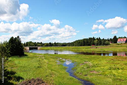 farm marshes by barn