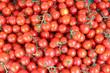 lot of ripe tomato