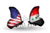 Two butterflies with flags  USA and Syria