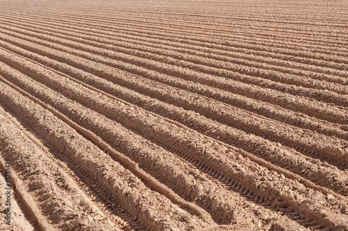 Deurstickers Droogte Plowed field