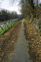 Bike path along the Naviglio canal color image
