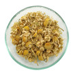 Herbal tea, heap of camomile flowers.