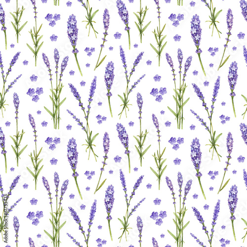 Lavender flower illustrations. Watercolor seamless pattern