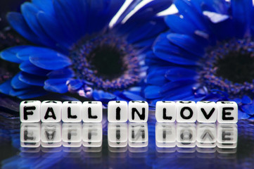 Blue theme with fall in love message and flowers