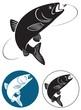 chub fish - 61766087
