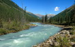Mountain Altai. river Shavla