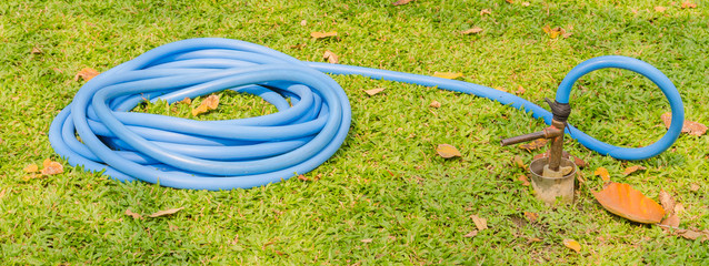 rubber tube water on  green grass