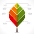 creative colorful leaf info-graphics design concept vector