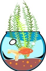 Fishbowl with goldfish and aquatic plant