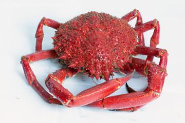 Araignée de mer cuite sur fond blanc