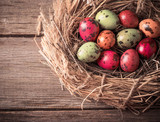 Easter egg in nest on rustic wooden background