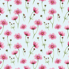 Cosmos flowers illustration. Watercolor seamless pattern