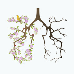 Abstract lungs before and after smoking