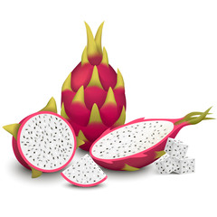 Dragon Fruit vector illustration