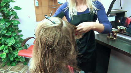 hair salon hairdresser shearing client hair tips