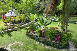 Tropical resort garden