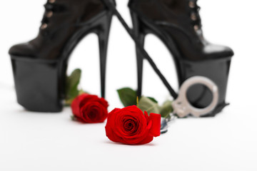 Rose with dominatrix equipment
