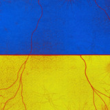 The struggle for the independence of Ukraine