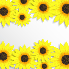 Creative background with sunflowers