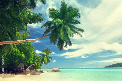 beach on Mahe island, Seychelles - 61788879
