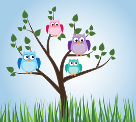 Owls sitting in a tree