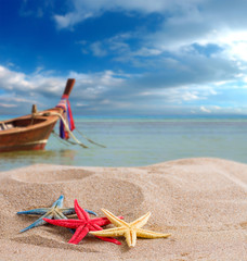 starfish on the beach in Thailand