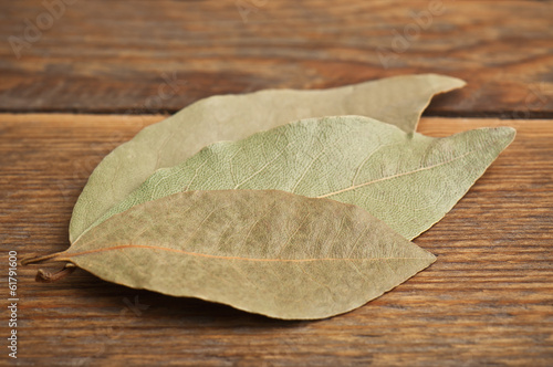 three laurel leaves