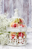 Pink roses in beautiful vintage birdcage. Wedding decor idea