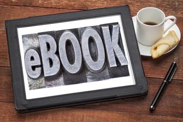 ebook (electronic book)