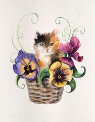 Kitten on the basket with flowers. Violet inside basket.