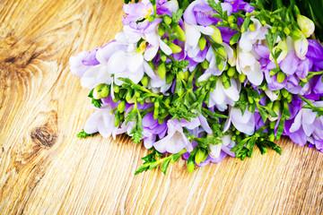 Lilac freesia flowers